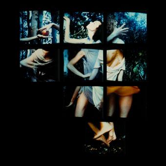 Parete di monitor con immagine frammentata di danzatrici e aranceto della Venere del Botticelli