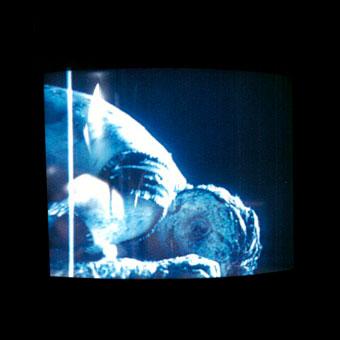 Uno dei monitor installati nel parco a Locarno per lo spettacolo